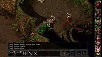 Baldur's Gate Enhanced Edition for Switch image