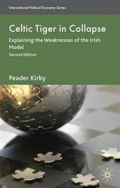 Celtic Tiger in Collapse by Peadar Kirby image