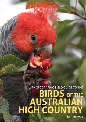 A Photographic Field Guide to the Birds of the Australian High Country by Neil Hermes image
