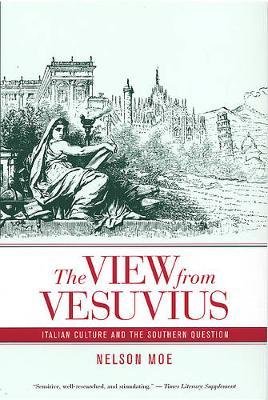 The View from Vesuvius by Nelson J. Moe