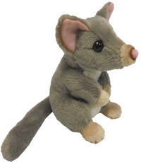 Antics: Wild Mini Possum - Small Plush image