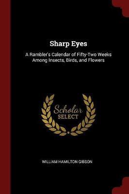 Sharp Eyes by William Hamilton Gibson image