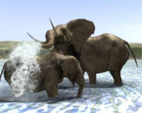 Wild Earth: Africa for PC Games image