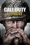 Call Of Duty World War 2: Key Art - Maxi Poster (663)