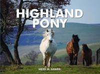 Spirit of the Highland Pony by Heidi M. Sands image