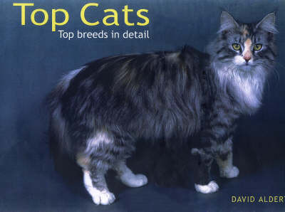 Top Cats by David Alderton image