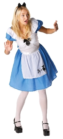 Alice in Wonderland Adult Costume (Large)