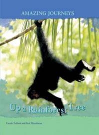 Up a Rainforest Tree by Carole Telford image