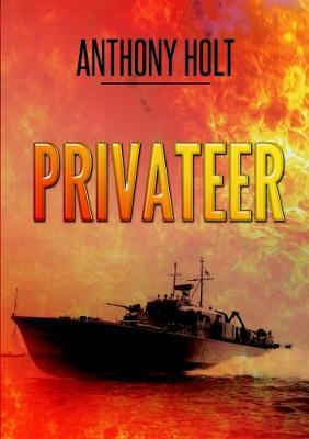 Privateer by Anthony Holt image