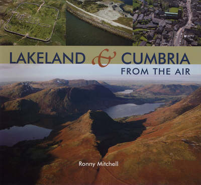 Lakeland from the Air by Ronny Mitchell image