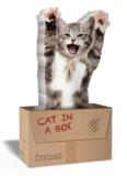 Mustard: Cat In A Box - Novelty Sticky Notes
