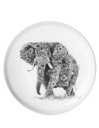 Maxwell & Williams Marini Ferlazzo Dish - African Elephant (11.5cm)