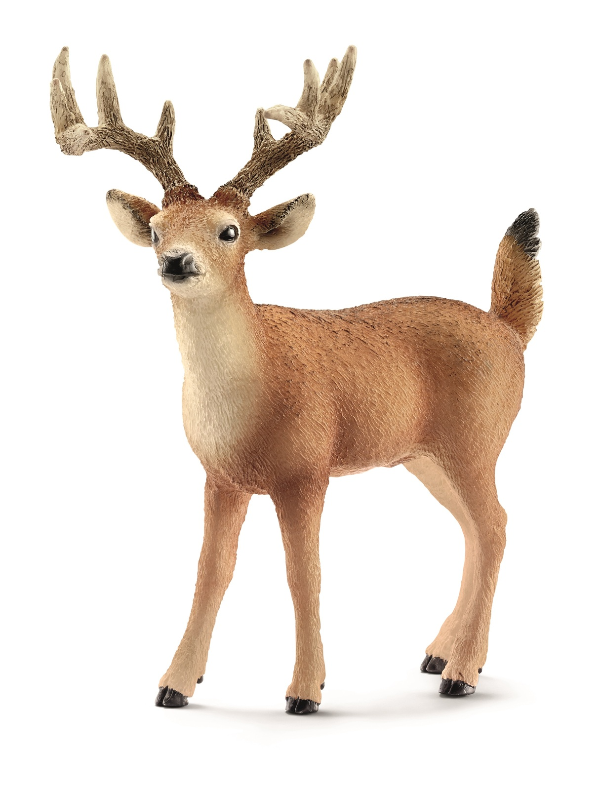Schleich: White-tailed Buck image