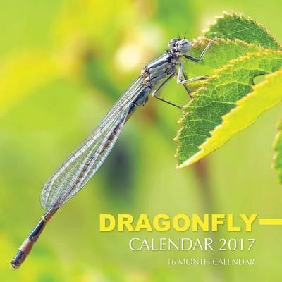 Dragonfly Calendar 2017 by David Mann