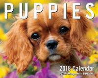 Puppies 2018 Mini Day-to-Day Calendar by Andrews McMeel Publishing
