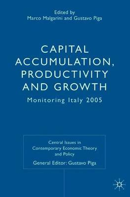 Capital Accumulation, Productivity and Growth