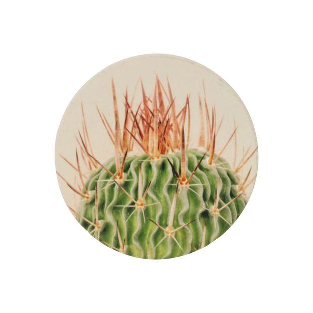 Splosh: Natural Oasis Spike Ceramic Coaster