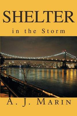 Shelter in the Storm by A. J. Marin