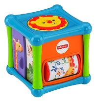 Fisher-Price: Growing Baby - Animal Activity Cube