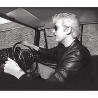 Brentford Trilogy (Impossible Bird, Dig My Mood, The Convincer) by Nick Lowe
