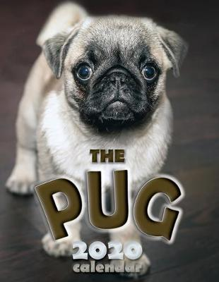 The Pug 2020 Calendar by Over the Wall Dogs