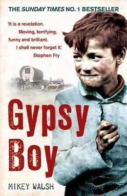 Gypsy Boy by Mikey Walsh image
