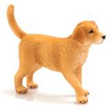 Animal Planet - Golden Retriever Puppy