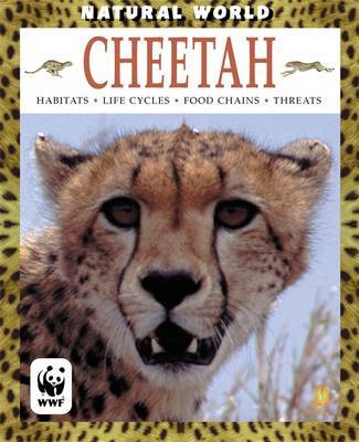 Cheetah by Anna Claybourne image