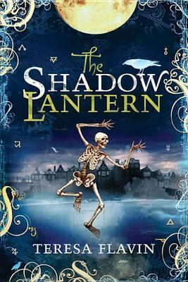 The Shadow Lantern by Teresa Flavin image