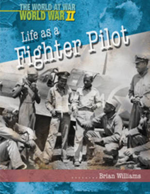Life as a Fighter Pilot by Brian Williams image