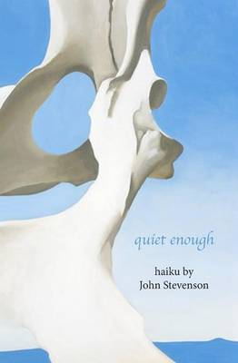 Quiet Enough by John Stevenson image