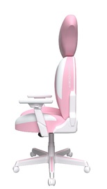DXRacer Teddy JK004 Gaming Chair (Pink) for PC