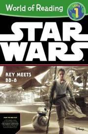 Rey Meets Bb-8 by Elizabeth Schaefer