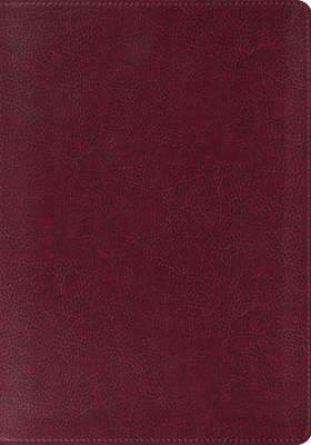 ESV Large Print Bible image