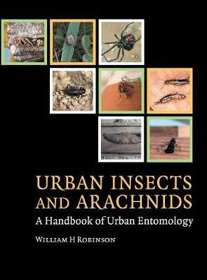 Urban Insects and Arachnids by William H Robinson image