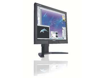 Philips 200P7EB 20  LCD Monitor DVI PiP Black
