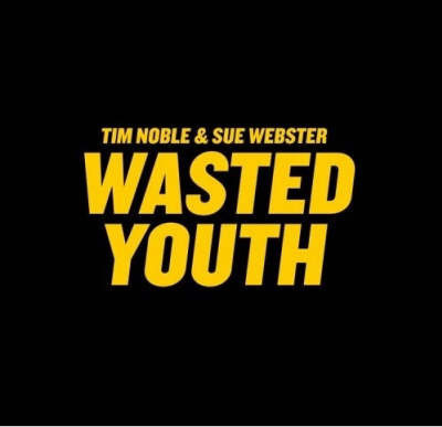 Wasted Youth by Tim Noble