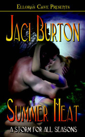 A Storm for All Season's Summer by Jaci Burton image