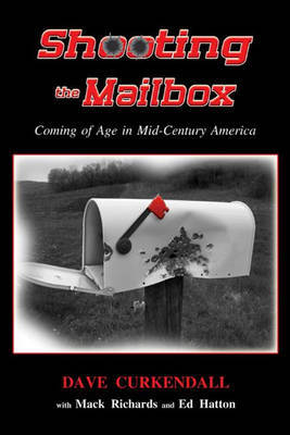 SHOOTING THE MAILBOX by Dave Curkendall image