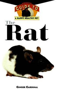 The Rat by Ginger Cardinal