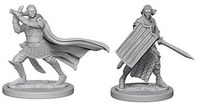 Pathfinder Deep Cuts: Unpainted Miniature Figures - Elf Male Paladin