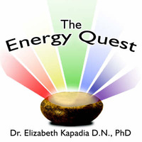 The Energy Quest by Elizabeth Kapadia, Dr, PhD image
