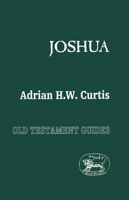 Joshua by Adrian Curtis image