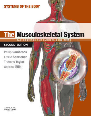The Musculoskeletal System image