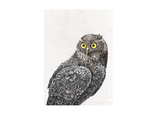 Maxwell & Williams: Marini Ferlazzo Birds Tea Towel - Barking Owl (50x70cm)