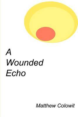 A Wounded Echo by Matthew Colowit image