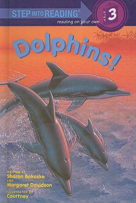 Dolphins! by Sharon Bokoske image