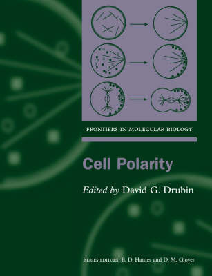 Cell Polarity image