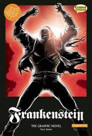 Frankenstein the Graphic Novel by Mary Shelley