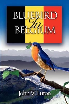 Bluebird in Belgium by John W. Luton image